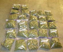 Half Pound Bags of Weed
